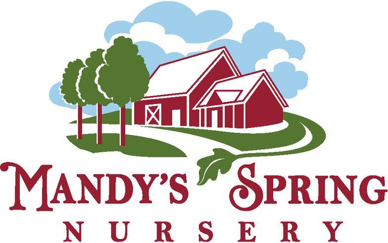 mandy spring farm nursery inc